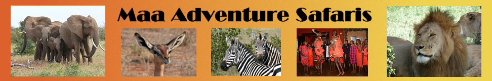 Maa Adventure Safaris